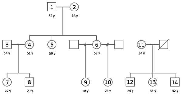 A pedigree of the population used in this study.