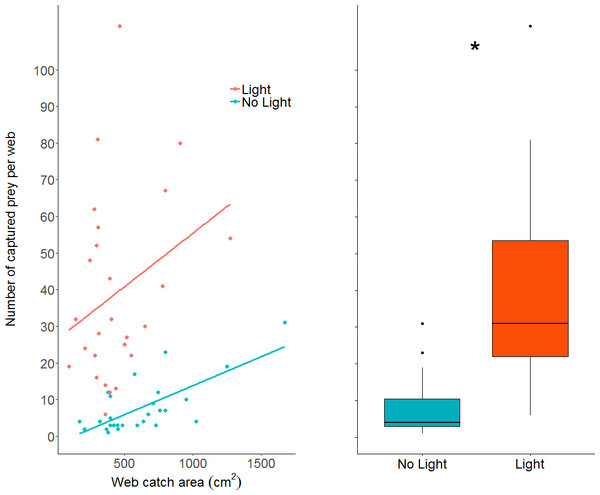 A dot plot of the number of prey captured per web, grouped by light condition and plotted against web catch area.