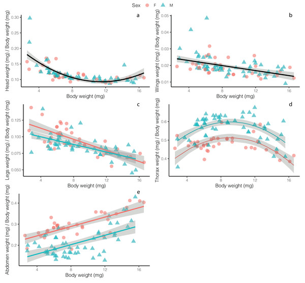 Relative weight investment in different adult Drino rhoeo body structures as a function of body size.