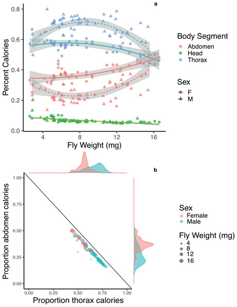 Energetic trade-offs in allocation to different body segments of adult Drino rhoeo.