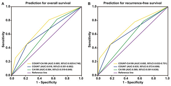 Time-dependent ROCcurves of preoperative CONUT score, serum CA199 level and CONUT-CA199 scorefor the prediction of pancreatic ductal adenocarcinoma patients' outcomes.