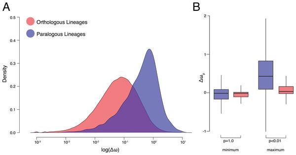 ω Estimates for orthologs and paralogs.