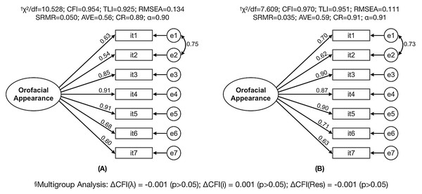Factorial model fit of the Orofacial Esthetic Scale (OES-Pt) for test and sample data and multigroup analysis between samples.