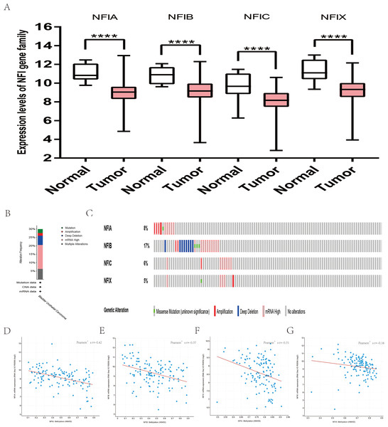 Transcription levels, genomic analysis of the NFIs and regression analysis between the mRNA expression of the NFIs and its corresponding methylation in bladder cancer (A–G).