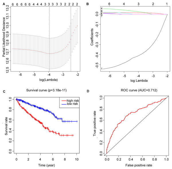 Construction of m6A related risk score model and assessment of its prognostic value.