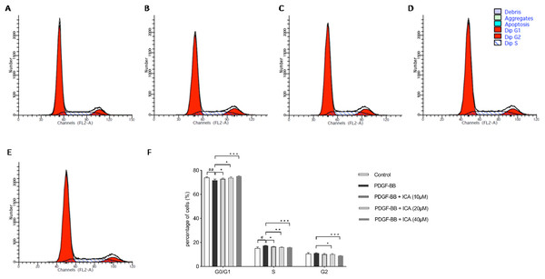 Effects of ICA on the cell cycle progression of PDGF-BB-stimulated RPE cells after 48 h.
