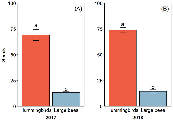Hummingbirds had higher efficacy than large bees in two reproductive events.