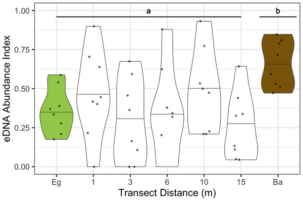 Dinoflagellate eDNA abundance indices plotted for all sites and months combined at each point along the transect from eelgrass to bare substrate.