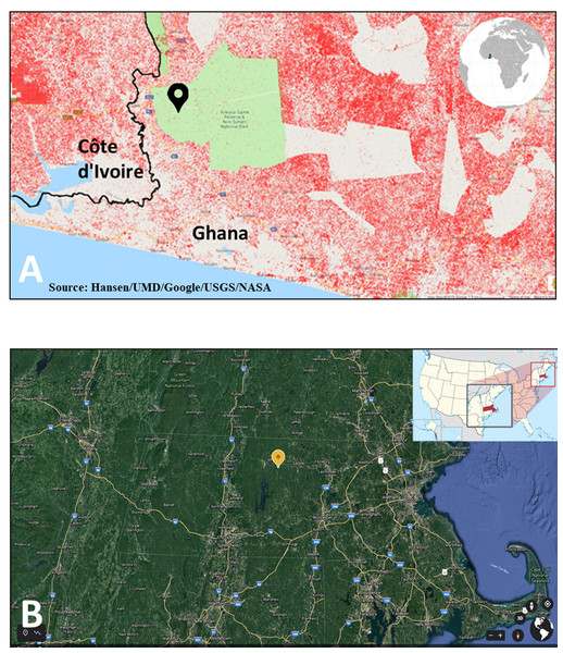 Locations of the eddy covariance sites analyzed in this study.