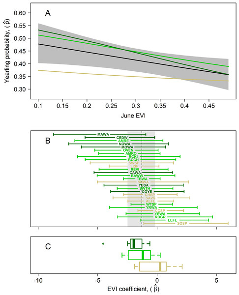 Results of multispecies hierarchical model to investigate the relationship between the age structure of adult birds and Enhanced Vegetation Index (EVI).