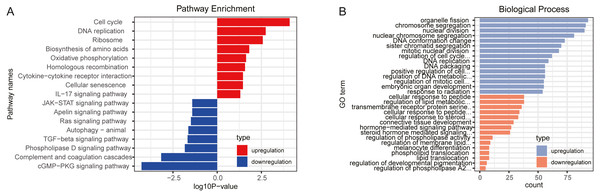 Function enrichment analyses for differently expressed genes.