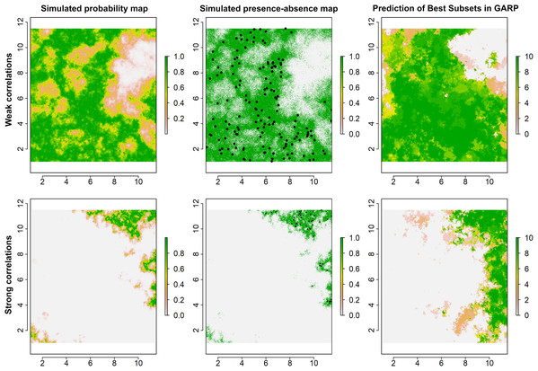 Simulated species distributions, occurrence (presence–absence) maps, and GARP prediction map for the best subset under the two scenarios where the correlation between species occurrence and environment are weak and strong.