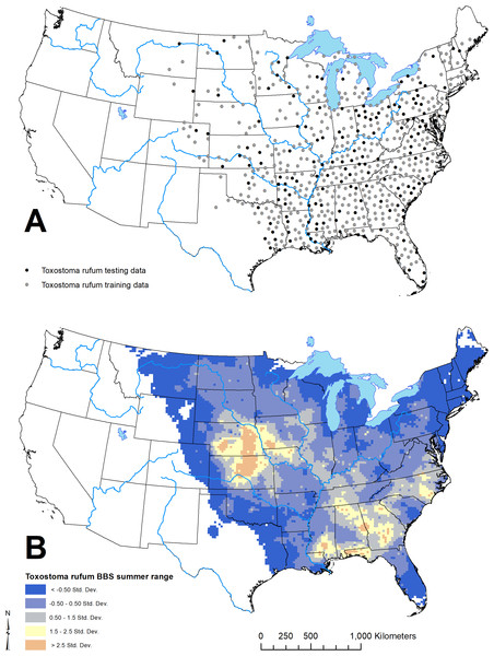 Geographic distribution of points representing Toxostoma rufum, the brown thrasher—a cosmopolitan bird species, used for training and testing the GARP model experiment in the case study (A); estimate of the breeding bird survey (BBS) extent for the species in the continental US used to limit occurrence points downloaded from the Global Biodiversity Information Facility (B).