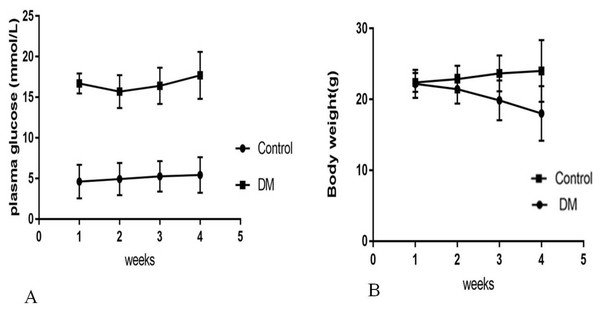 Biochemical parameters in control mice and STZ-induced diabetic mice over 4 weeks.