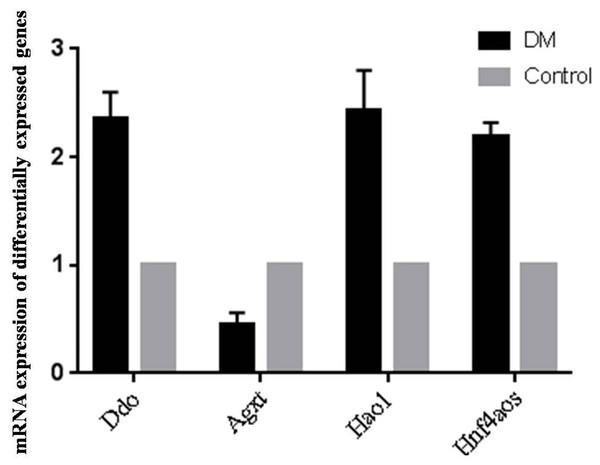 qRT-PCR validations of differentially expressed RNAs.