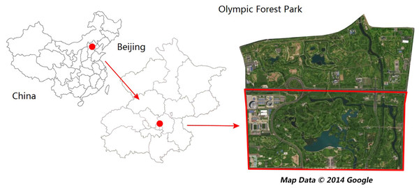 Map of the study area and sampling site locations (Olympic park image from 2014 Google Maps).
