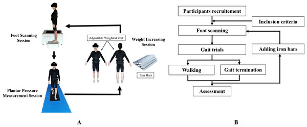Protocol of foot scanning, plantar pressure collection and weight increasing.