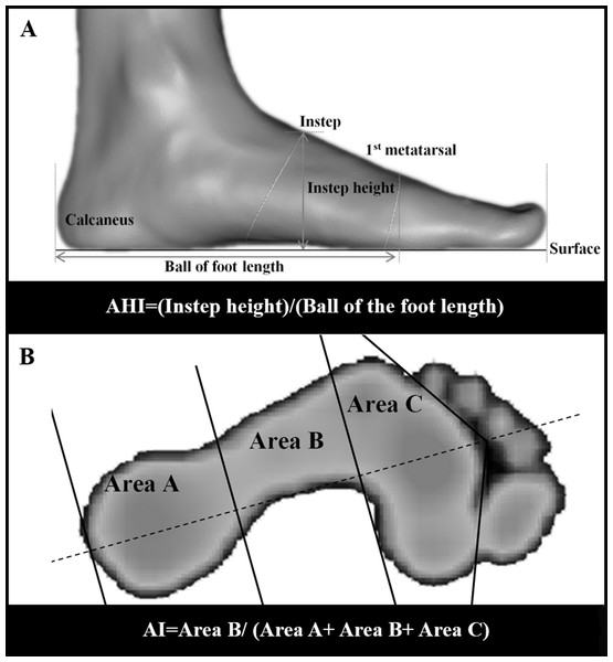 Measurements of AHI and AI.