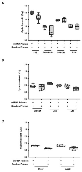 RNAmp increases qPCR sensitivity for mRNA detection.