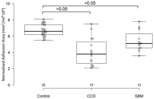 Box and whisker plots of interthalamic adhesion areas normalized to total brain volume for three groups of dogs.
