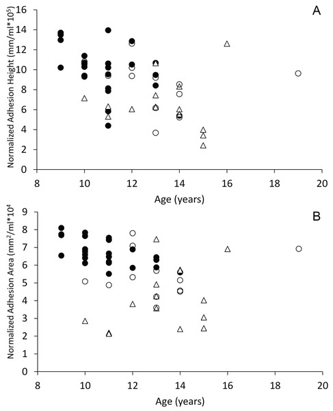 Scatterplots of interthalamic adhesion measurements across age.