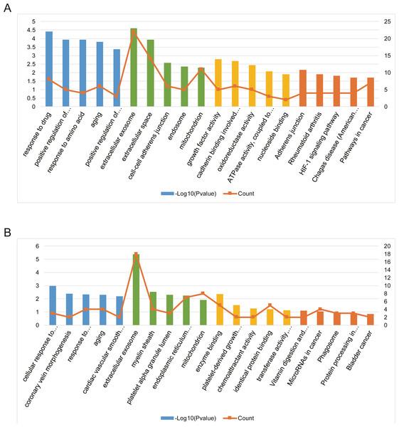 Bioinformatics analysis of AILI-related target genes.