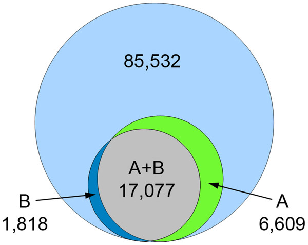 Venn diagram for annotated contigs from Blast2GO and contigs with KEGG orthology (KO) assignment.