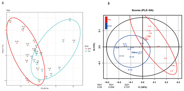 The principal component analysis (PCA) (A) and partial least squares discriminant analysis (PLS-DA) (B) of metabolite pathways between TWAs and NPDDs.