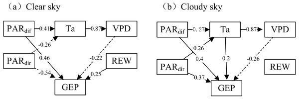 The path analysis diagram.