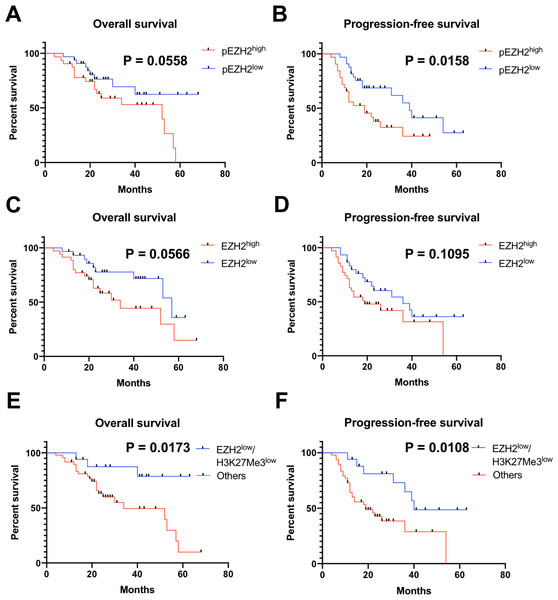 pEZH2 and EZH2/H3K27Me3 predicted prognosis in ovarian cancer.