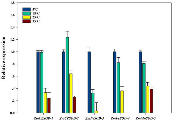 Expression pattern of ZmSOD genes in response to various temperature stresses.