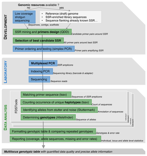 Workflow for SSRseq markers optimization or development depending on genomic resource availability, from selection to multiplexed amplification and library preparation to bioinformatics analysis.