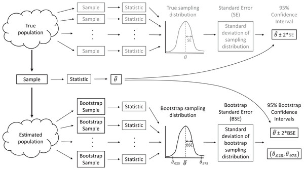 A sampling distribution is the distribution of sample statistics computed using different samples of the same size from the same population.
