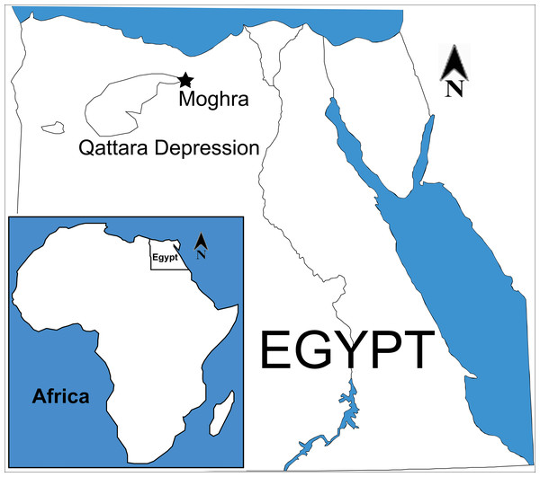 Map of Egypt, indicating the geographic position of Moghra.