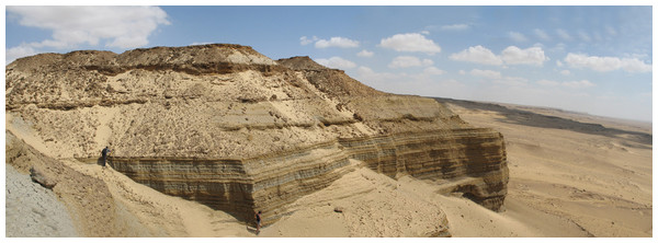 Panoramic photograph of the Moghra Formation.