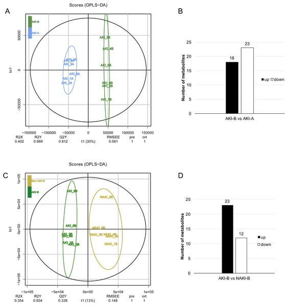 OPLS-DA score plot of of AKI-B vs. AKI-A and AKI-B vs. NAKI-B.