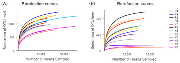 Rarefaction curves of different soil microbial communities.