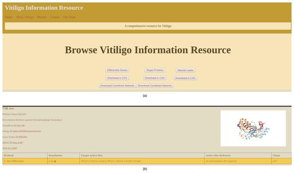VIRdb Interface.