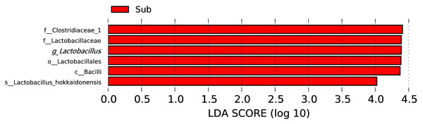 LDA score map with a threshold value of 4.0.