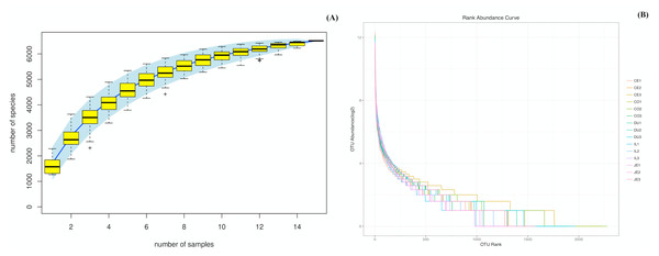 Species accumulation (A) and rank-abundance (B) curves analysis of the different gut intestinal tract samples at 97% sequences identity.