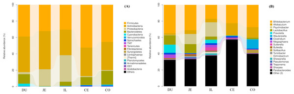 Community composition of the gut microbiota in different intestinal segments of wild pigs at the phylum (A) and genus (B) levels, respectively.