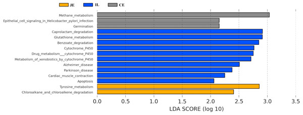 Predicted functional differentially of the bacterial genus represented in the jejunum (JE), ileum (IL), and cecum (CE) gut locations in wild pigs identified by LEFSe using an LDA score threshold of >2.0.