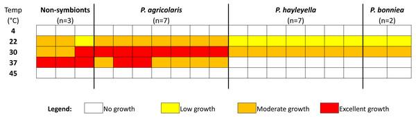 The optimal growth temperature of Paraburkholderia sp. nov. is 30°C.