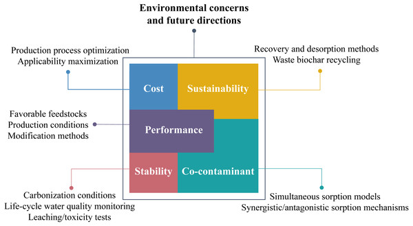 Environmental concerns and future research directions of biochar application.