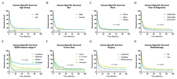 Cancer-specific survival of patients with ATC by different variables.