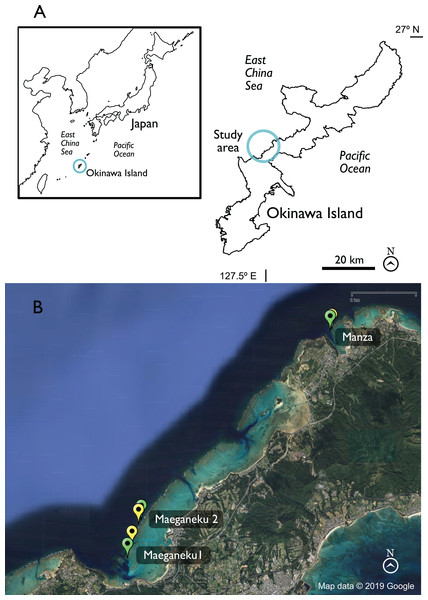 Map of Okinawa and study area.