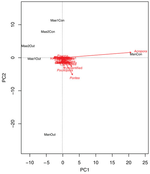 Principal component analysis biplot showing correlation patterns between the coverage of different coral genera and Site and Treatment.