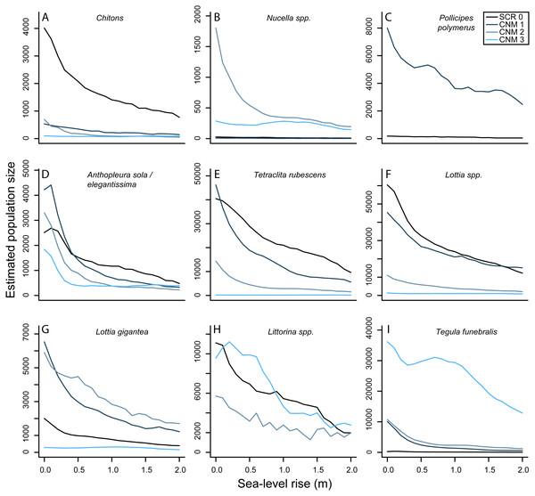 Sea-level rise impacts to rocky intertidal invertebrate abundances.
