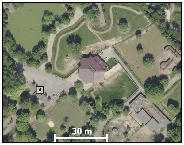 A fragment of the orthophotomap showing developments in the immediate vicinity of the antelope house.