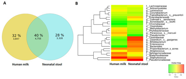 Analyses of shared OTUs in human milk/ neonatal stool and its abundance.